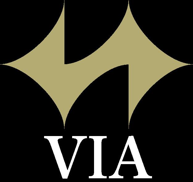 株式会社VIA